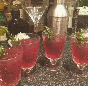 Pomegranate & Rosemary Gin Cocktail